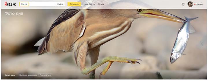 Яндекс фото - функционал